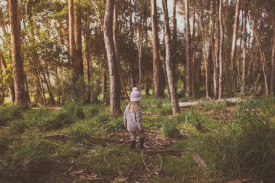 5 yaşındaki kız her gece evden kayboluyordu, takip ettiklerinde gözlerine inanamadılar