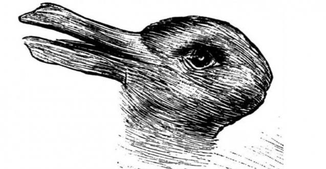 Bu resimde ilk bakışta hangi hayvanı görüyorsunuz?