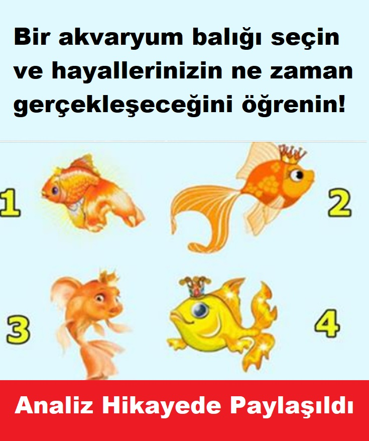 Bir akvaryum balığı seçin ve hayallerinizin ne zaman gerçekleşeceğini öğrenin!