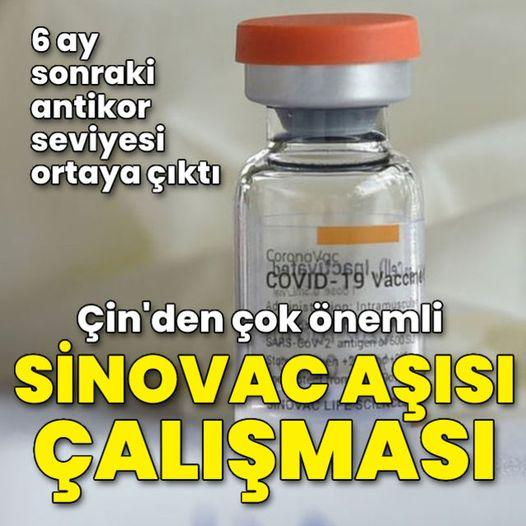Sinovac aşısı olanlar dikkat! 6 Ay Sonraki Antikor Seviyesi Açıklandı