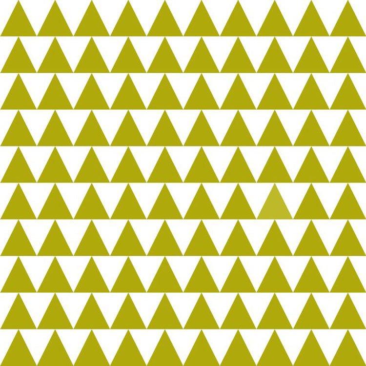 Sadece Mükemmel Algısı Olan Farklı Renkleri Görüyor. Siz Kaç Görebildiniz? Detaylar