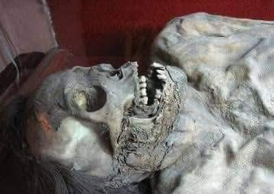 Bilim adamları, bir gün bir mağarada yaşı 1.582.903 olan bir insan fosili bulur