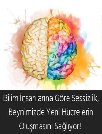 Bilim İnsanlarına Göre Sessizlik, Beynimizde Yeni Hücrelerin Oluşmasını Sağlıyor!