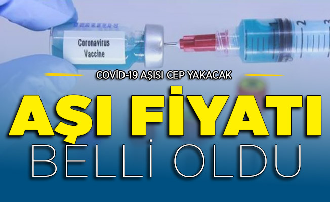 Corona Aşısı Paralı Olacak Ve Cep Yakacak İddiası: İşte Aşı İçin Ödenecek Fiyat