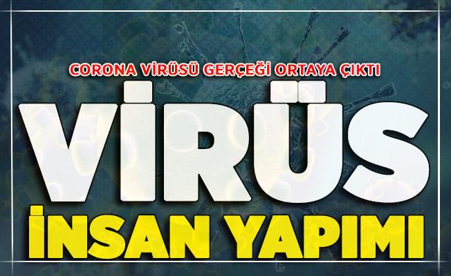 Corona Virüsü Şok Gerçek Ortaya Çıktı: ABD'ye Kaçan Çinli Uzman, Virüs İnsan Üretimi ! Rapor Yakında Tüm Dünyayla Paylaşılacak