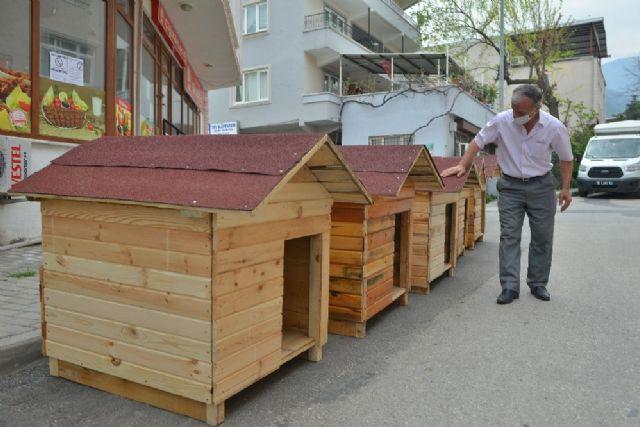 Evde kaldı, sokak hayvanları için 5 ev yaptı