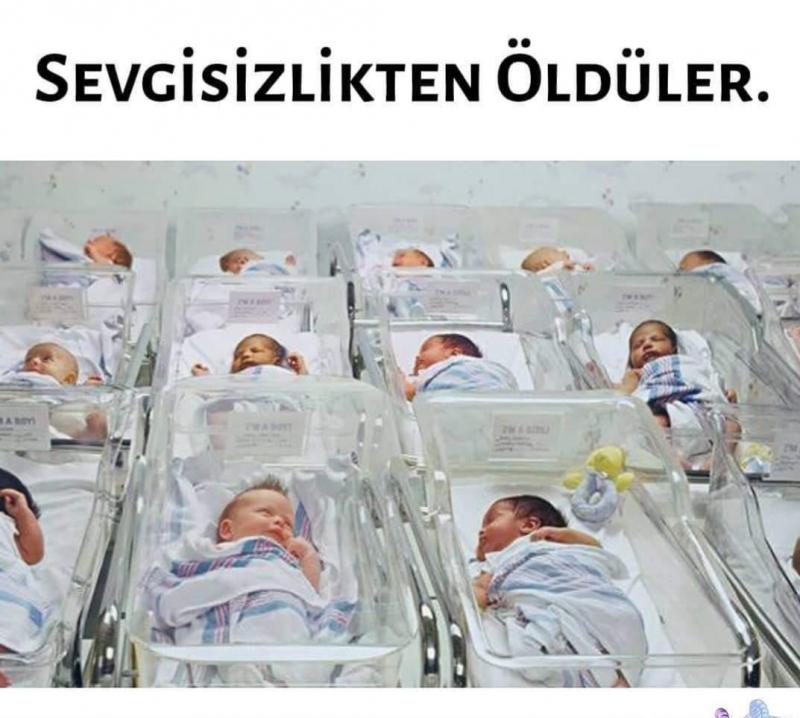 Yıl 1944. 40 yeni doğmuş bebekle akıl almaz bir deney yapılıyor. Bebekler iki gruba ayrılıyor.