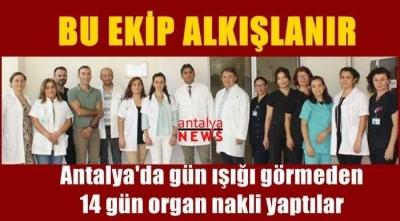 Antalya'da gün ışığı görmeden 14 gün organ nakli yaptılar