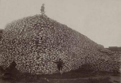 Beyaz Adam'ın Kızılderilileri Soykırımı Kızılderili Katliamı