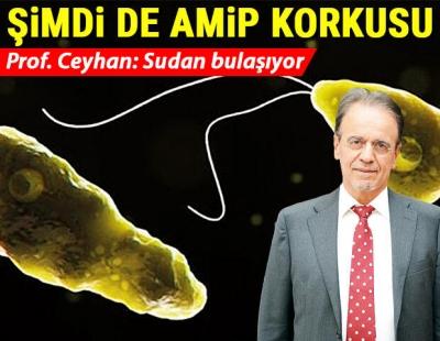 Bilim Kurulu Üyesinden Korkutan Açıklama 'Beyin yiyen Amip Türkiye'de de var'