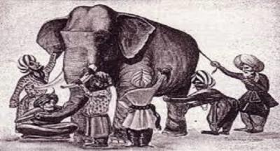 Bir Hintli, hayatlarında hiç fil görmemiş insanların yaşadığı bir köye bir fil getirdi