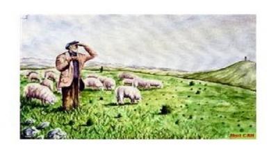 Çoban sürüyü korumak için kurtlara karşı kahramanlık gösterip yaralanan köpeğine bir koyun bağışlamış.