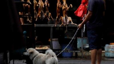 Coronanın Çıktığı Ülkede Ve Yerde Yine Mide Bulandıran Görüntüler: Tüm Uyarılara Rağmen Çinliler Akıllanmıyor