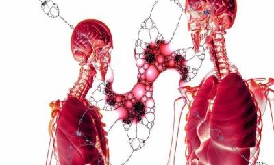 İnsan Olarak Anatomimiz Sanıldığı Gibi Mükemmel mi..?
