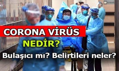 Koronavirüs Nedir ? Koronavirüs Hakkında Neler Biliyorsunuz?