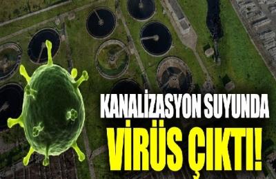 Şoke Eden Olay. Hollanda'da Kanalizasyondan Koronavirüs Çıktı. Atık Sulardan Uzak Durun !