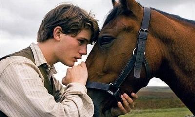 Üzücü Bir Gerçek: Bir At Sakatlandığında Neden Ölüme Mahkum Edilir?