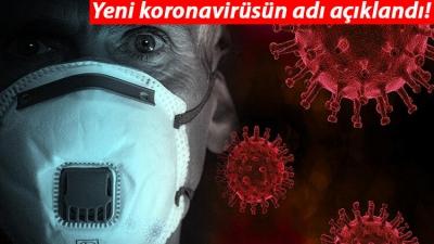 Yeni Virüsün Adı Açıklandı